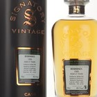 Benrinnes 21 Year Old 1995 (casks 9042 & 9067) - Cask Strength Collection (Signatory)